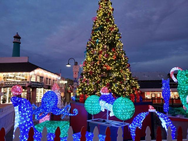 Christmas tree on the Wharf.jpg