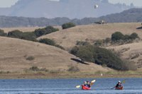 kayak elkhorn slough.jpg