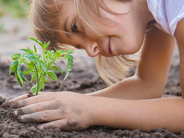 girl gardening pano.jpg