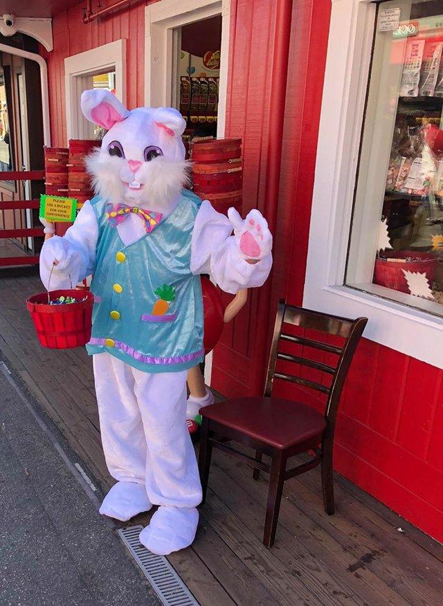 Bunny at Candy World.jpgx.jpg