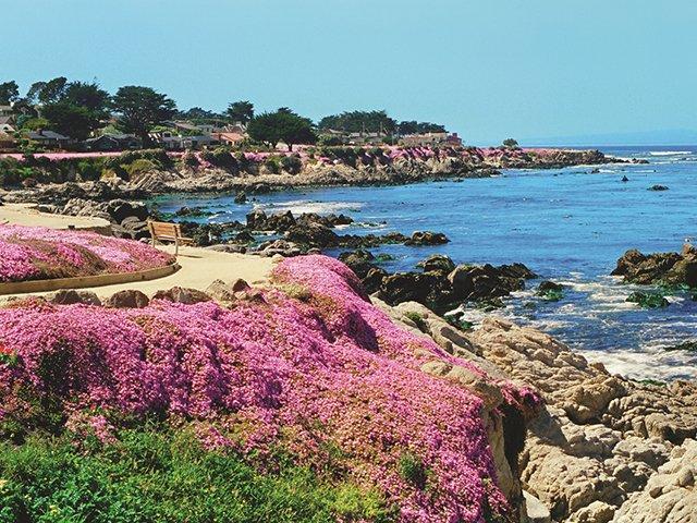 PG coast.jpg