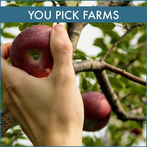 You Pick Farms Directory