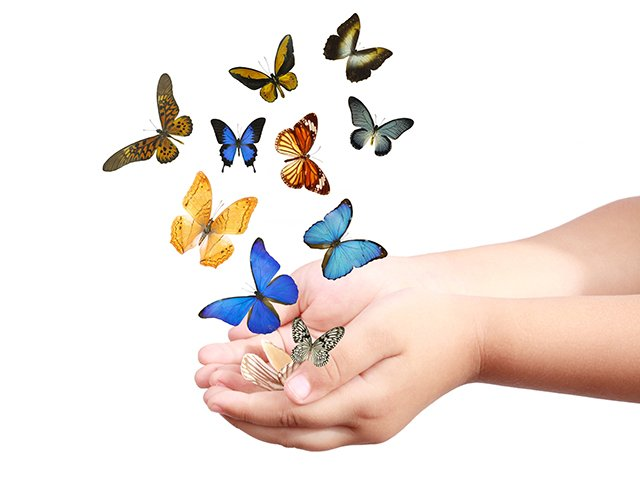 hands with butterflies.jpg