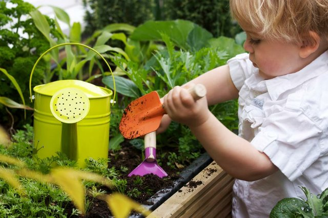 Playing in the Dirt! Spring Gardening With Your Kids - Monterey Bay ...