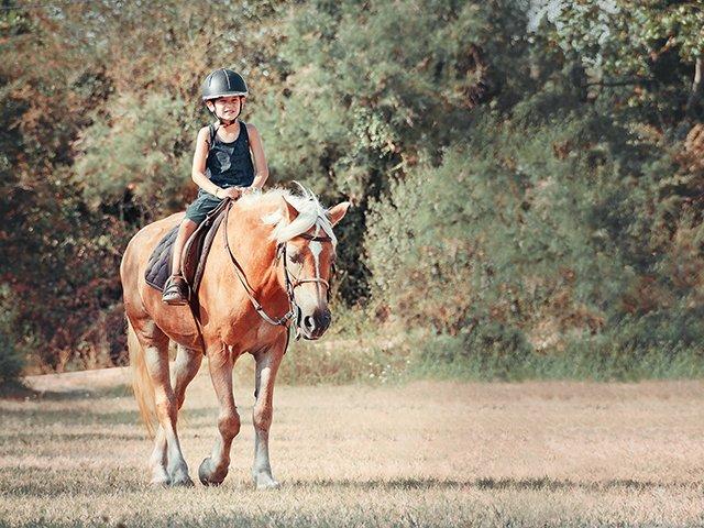 child on horseback.jpg