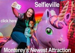 Selfieville opening ad